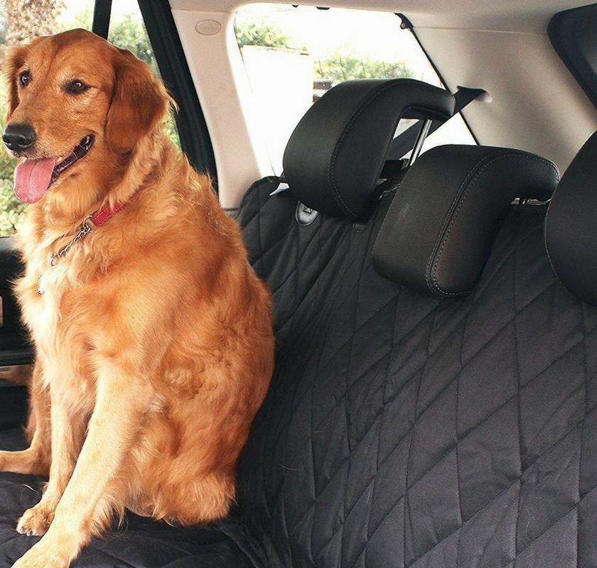 EVELTEK: i coprisedili auto per il tuo amico a quattro zampe