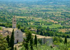 Pulire i sedili auto: trucchi e consigli - image 158448-Basilica-Of-Santa-Chiara-240x172 on https://motori.net